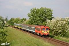 M41 2112 2011.05.17. Győrszabadhegy (mienkfotikjofotik) Tags: