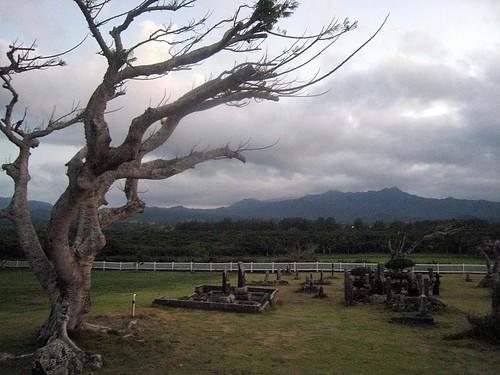 japanese graveyard in kiluea