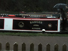 the only badger (kjerstieb) Tags: england tring canalboat grandunioncanal