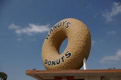 Gnarly (jakerome) Tags: california losangeles donut southbay randysdonuts jakepix dayofthedonut upcoming:event=472136 upcoming:event=473157