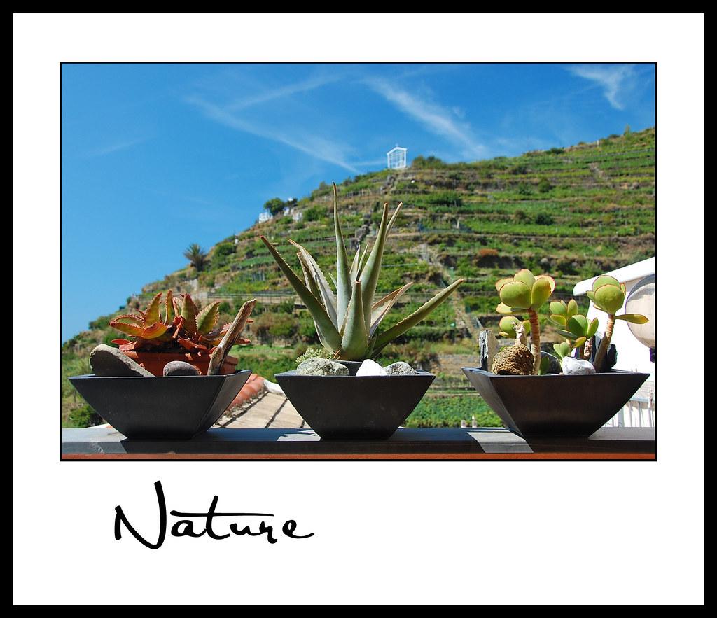 Nature_Renee B 01