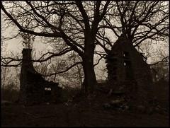 Abandoned Dwellings (monkeyiron) Tags: house tree sepia scotland perthshire ruin lawers dwelling