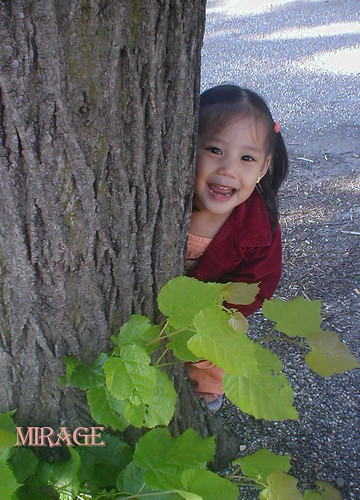 kid behind tree