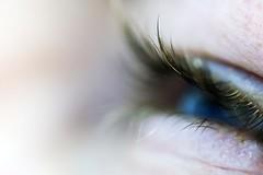 lange Wimpern (Frau Koriander) Tags: auge eye wimpern blau langewimpern makro macro cilia eyelashes lashes blue pupille pupil detail magiceyes nikond50 nikkoraf60mmƒ28