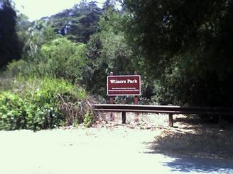 wilacre-park-0