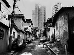 Favela - Canio - Bairro de Lata (kass) Tags: city cidade brazil orange building brasil work trabajo fantastic sopaulo laranja ciudad pb feira hunger tired