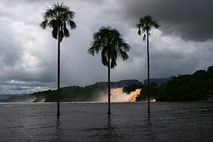 Canaima Lagoon (Ian Lambert) Tags: park tree venezuela lagoon palm national waterfalls canaima naturesfinest natureselegantshots absolutelystunningscapes qualitypixels top20travelpix