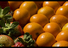 Kinkan: a small citric fruit (helenabraga) Tags: explore kinkan ctrico blueribbonwinner laranjinha helenabraga aplusphoto ultimateshot visiongroup citrit goldstaraward vision100
