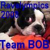 "Ravelympics 2008  ""Team Bob"""