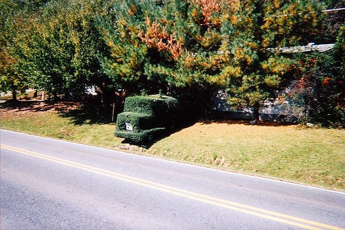 Old Fort Topiary 002