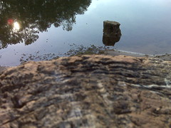 A sort of artistic shot of a log and another log (Clevergrrl) Tags: georgia mud stuck augusta quicksand clarkshill thurmondlake