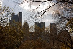 IMG_4006 (stuballscramble) Tags: autumn trees usa ny newyork fall leaves skyline path centralpark essexhouse