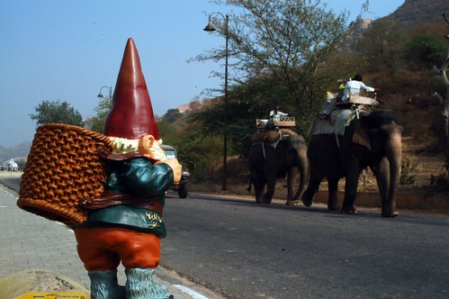 Björn Hitchhikes for an Elephant Ride
