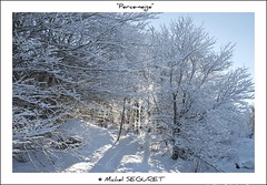 Perce neige (Michel Seguret) Tags: schnee winter wild fab snow france verde green nature landscape fun nikon earth postcard hiver vert enjoy sensational neige grn fabulous michel iq sublime paysage atm inverno languedoc naturesbest gmt languedocroussillon smrgsbord enjoylife cartepostale lozere aubrac seguret nikond200 inspiredbylove gevaudan thinkgreen kartpostal amazingcapture bestmoment diamondheart flickrdiamond francelandscapes heartawards diamondstars exemplaryshotsflickrsbest wildearth thisphotorocks internationalgeographic thebestmoment thebestofday gnneniyisi worldtrekker thebestoftheday checkoutmynewpics gnnenlyisi fenomeninaturali flickrlovers photographersgonewild flickrverte naturallymagnificent frommylens momentdimagination flickrpopularphotographer croquenature excelenceofphotographer digitalartfx atmphotography diamondphotographersclub favoritelandscape michelseguret