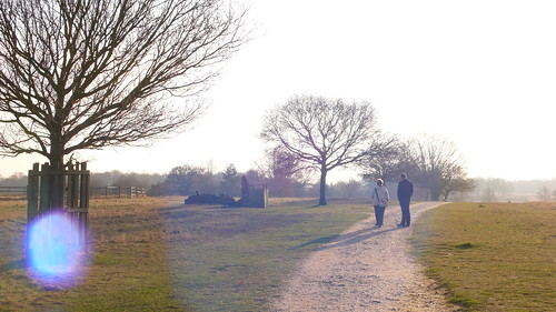 Richmond Park by chrisbulle, on Flickr