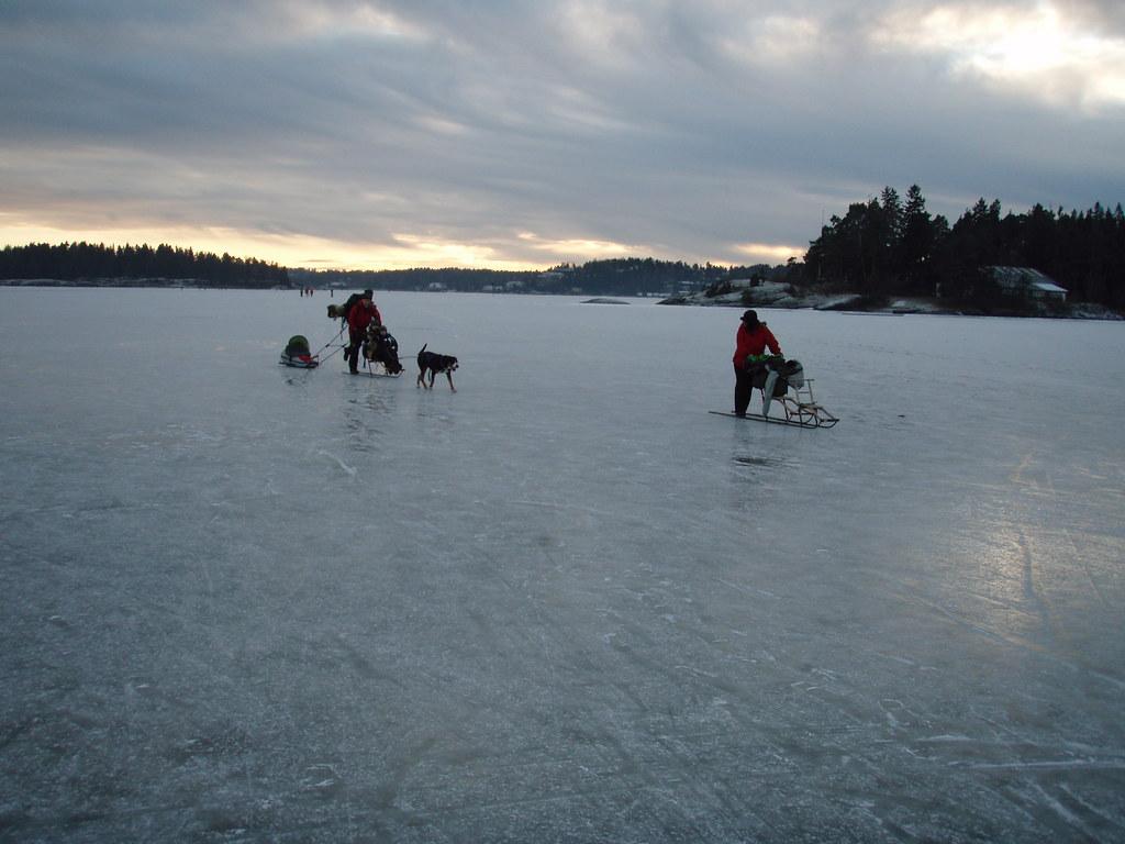 norske escorte dogging oslo
