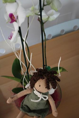 A fada das orquídeas
