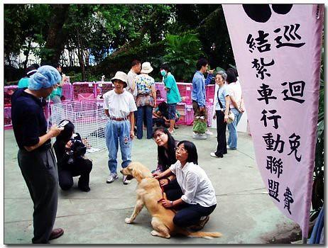 犬貓免費絕育計畫~懇請大家幫忙~徵志工和物資喔
