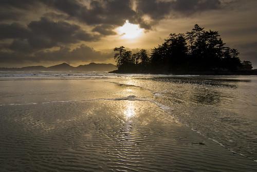 Vancouver Island-5270