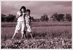 friends forever (rinidisini) Tags: kids children indonesia friendship yogyakarta ricefield sahabat boygirl sawah rafliima