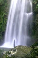 beauchamp002 (eyesofmark) Tags: waterfall ferns beauchamp otwayranges