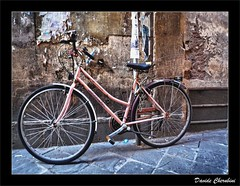 La Bicicletta Rosa 2 (Davide Cherubini) Tags: pink muro bike bicycle wall rosa bicicleta chapeau bicicletta themoulinrouge cherubini fpg 25faves dcherubini theperfectphotographer davidecherubini lesamisdupetitprince