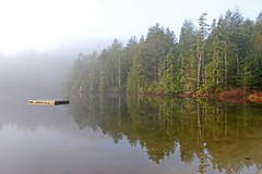 Ready and Waiting for Summer (Peggy Collins) Tags: morning trees mist lake canada reflection misty fog landscape dock lily britishcolumbia foggy penderharbour sunshinecoast waterscape blueribbonwinner gardenbay anawesomeshot peggycollins gettyimagescanada