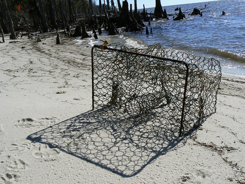 Camden County Jeep Trail - Crab Basket and Shadow