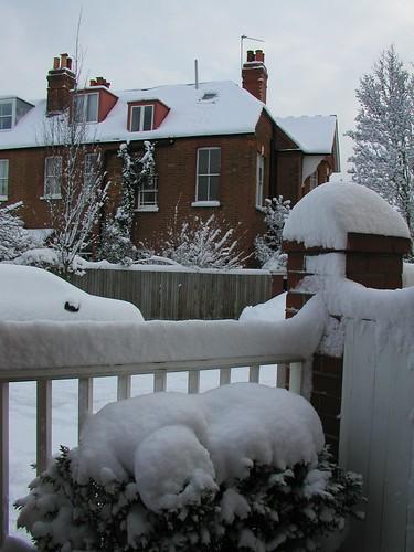 London Snow HY 0109 023