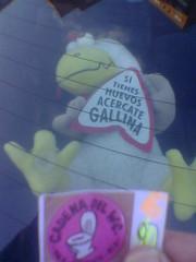 SI TIENES HUEVOS ACERCATE GALLINA (algarrobo_108) Tags: water del de la pollo voz experiencia polla demente cadenadelwc arradio