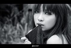 screen (AehoHikaruki) Tags: life light portrait people blackandwhite bw cute girl beautiful face fashion 1 photo nice interesting asia sweet album great chinese taiwan olympus screen lazy taipei lovely   e1 sylvia  browsing       aehohikaruki platinumheartaward