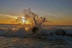 Tramonto Forio (Ischia) (Filippo Perrella) Tags: sea italy sun island san italia tramonto mare sole ischia forio francesco onde isola onda scogli schiuma scoglio