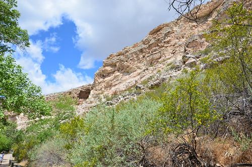 Arizona 2011 480
