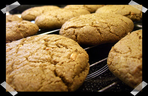 peanutbutter cookie resipies