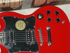 Upclose (wesw02) Tags: epiphone g310