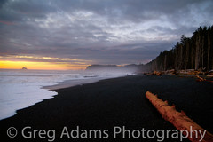 Dusk on La Push Beach (Greg Adams Photography) Tags: winter sunset beach clouds islands washington log surf dusk logs olympicpeninsula driftwood olympic gravel lapush specland hhsc2000
