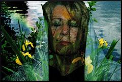 Mediation by the lake (Mara ~earth light~) Tags: portrait self licht himmel gelb sensational gaia regenbogen erde irispseudacorus mythologie griechisch gttin noosphere sumpfschwertlilie uranos gtterbotin