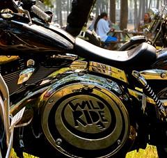 Enter Wild Ride (foxxyz) Tags: distortion logo virginia tour skateboarding motorcycle virginiabeach wildride emerica