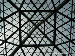 Ceiling like cobweb (okamekun) Tags: building japan spiderweb symmetry cobweb shizuoka celling darksky twinmesse