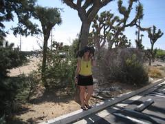 Yucca outside my motel (Tmrrw Never Knows) Tags: california summer black hat june big desert july floppy 2008 yucca joshuatrees widebrimmedhat