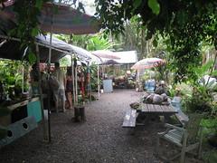 Road to Hana Food Stop (Steve Isaacs) Tags: hawaii mauihawaii