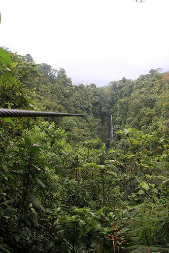 Costa Rica - Día 5 (371)