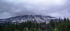 2008-07-31 Mt Ranier (16a)