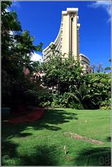 018 (conormichael) Tags: ocean sunset summer vacation canon golf eos hawaii waikiki oahu 1d kauai poipu 2008 markiii canonef70200f28isl canonef1635f28lii conormichael