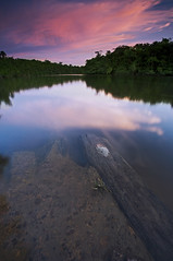 Smooth dusk (Erick Loitiere) Tags: sky sun clouds port river soleil rivire ciel shore erick nuages paysage crpuscule fleuve couchdesoleil rivage guyane 973 frenchguiana canonef1740mmf4l roura guyanefranaise 97300 loitiere fourgassier erickloitiere 99ininterestingnesson20081005 ricoliki