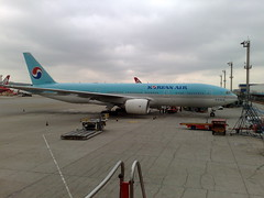 Korean Air Bird Strike