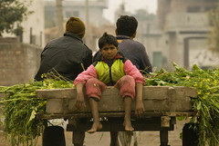 Bumpy grumpy ride... (Saad Sarfraz Sheikh) Tags: poverty nikon lahore nikond80 raiwind