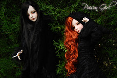 Ashlar & Rowan 58 - DOT Lahoo & Shall (-Poison Girl-) Tags: black nature gothic dot sd bjd dollfie superdollfie dod rowan shall dreamofdoll balljointeddoll ashlar lahoo dotshall dotlahoo dodshall dodlahoo