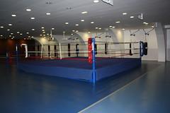Palais_des_Sports_0017 (Gilles Couteau) Tags: puteaux palaisdessports 92800 iledeputeaux