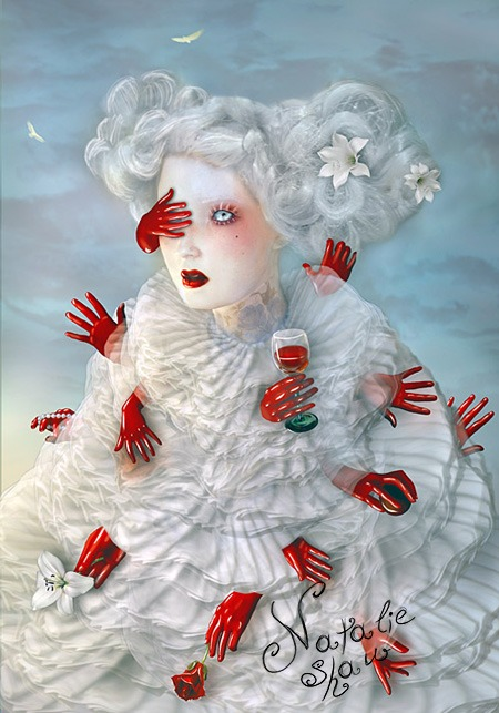 Bones and Silk by Natalie Shau